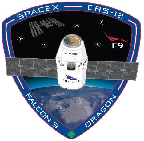 spx12 patch