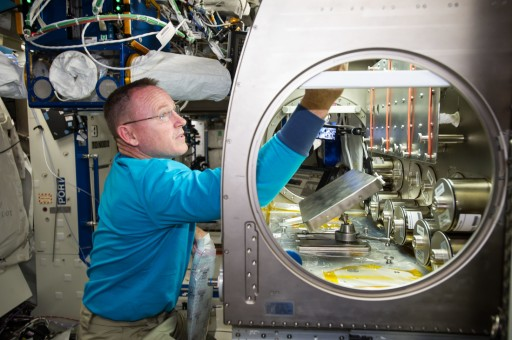 Rodent Research Ops in Microgravity Science Glovebox - Photo: NASA