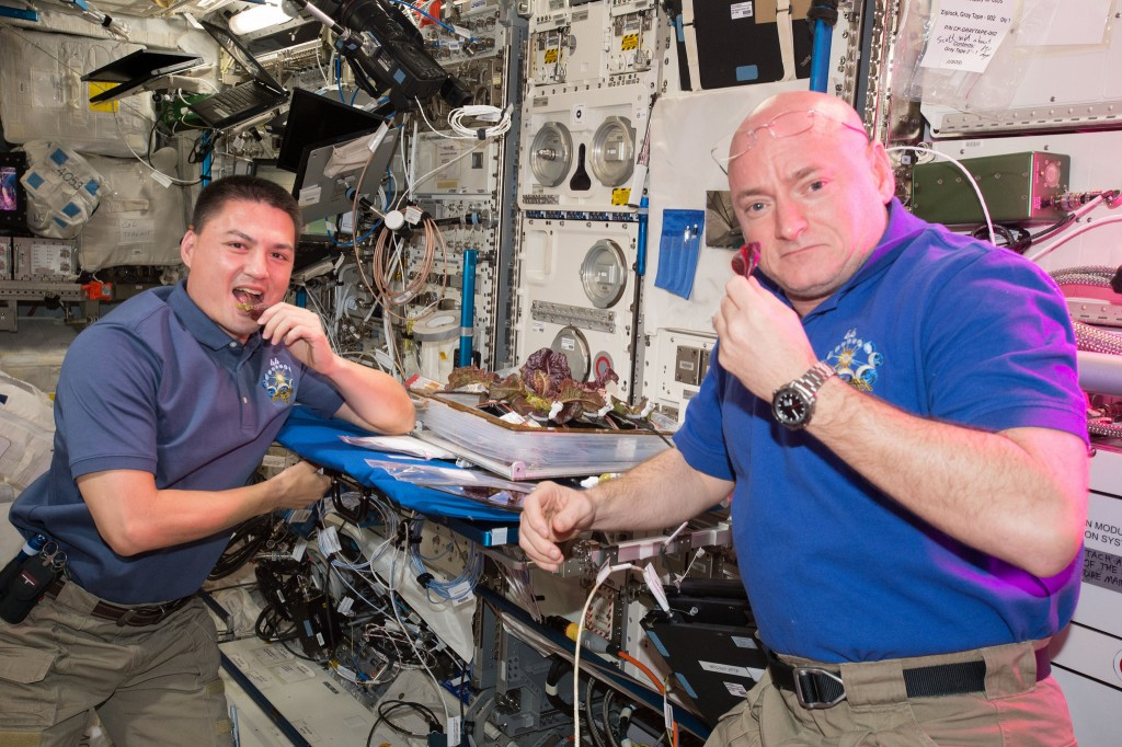 Scott Kelly and Kjell Lindgren taste lettuce plants harvested for the VEG-01 investigation - Photo: NASA