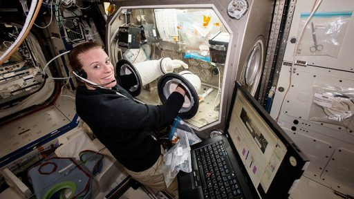 Kate Rubins working in the Microgravity Science Glovebox - Photo: NASA
