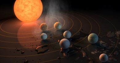 Record Batch of Earth-Sized, Habitable-Zone Planets Discovered around Single Star